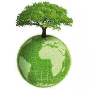 Изготовлено из экологически чистого пластика